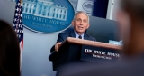 After a Skirmish Over U.K. Vaccine Approval, Fauci Offers an Olive Branch